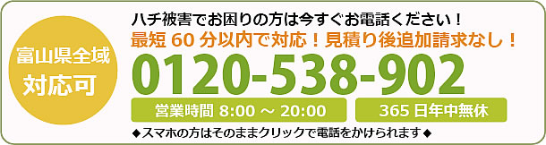 富山県蜂駆除・巣の撤去電話お問い合わせ「0120-538-902」