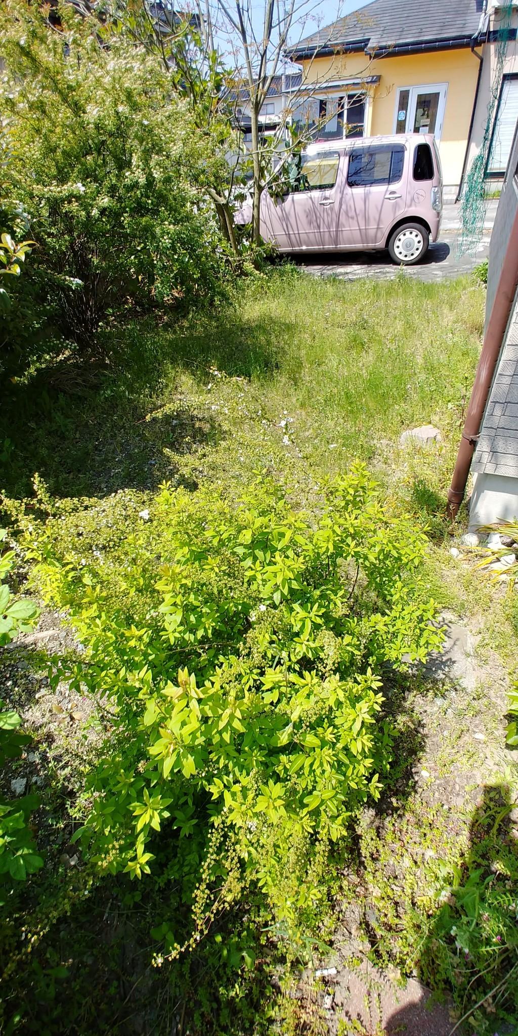 【射水市】30坪のお庭の草刈りご依頼 お客様の声