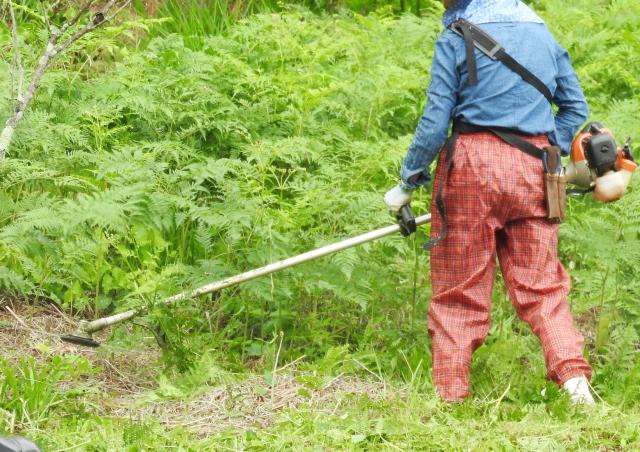 滑川市で草刈りにかかる料金相場は?追加料金や業者選びのコツまで解説