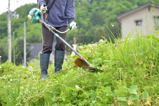 滑川市で草刈りに最適な年3回の時期~楽に草刈りを終えるコツまで徹底解説
